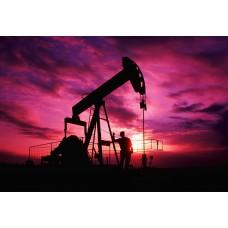 Россия на втором месте по добыче нефти в мире в 2018 году, первое США.